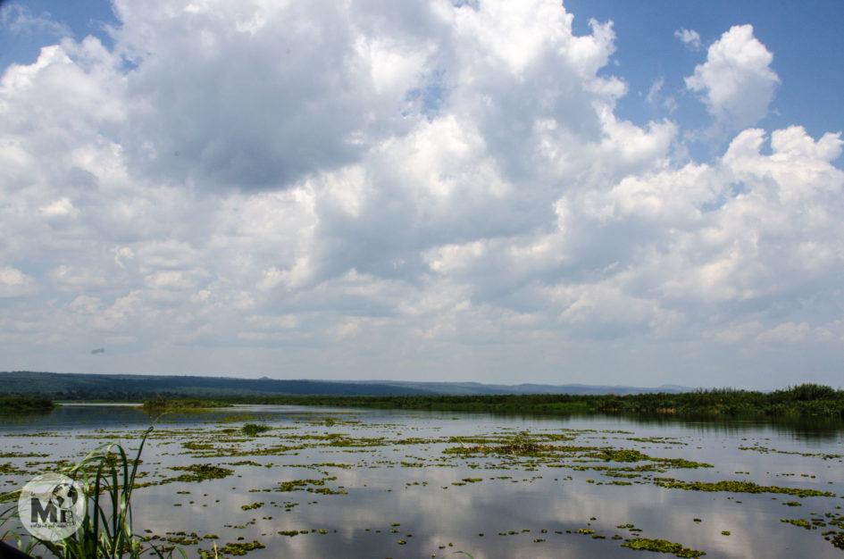 la-mi-voltant-pel-mon-uganda-2016-121
