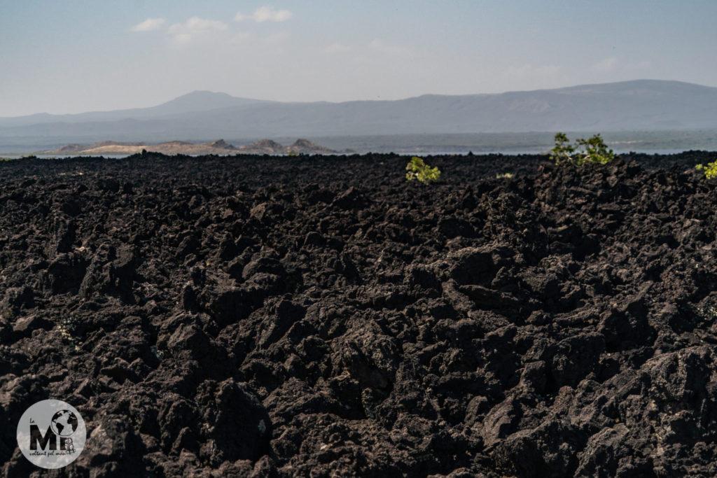Camps de lava per tot arreu a mida que avancem cap a la zona més activa d'activitat volcànica de tot Àfrica